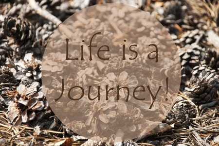 Texture Of Fir Or Pine Cone. Autumn Season Greeting Card. English Quote Life Is A Journey Banco de Imagens