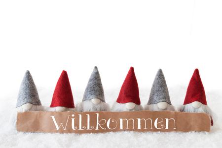 gnomos: Etiqueta con texto Alemán Willkommen Medios de bienvenida. Tarjeta de felicitación de Navidad con gnomos. Fondo blanco aislado con nieve.