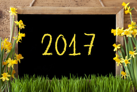 hapy: Blackboard With Text 2017 For Happy New Year Or Spring Greetings. Spring Flowers Nacissus Or Daffodil With Grass. Rustic Aged Wooden Background.