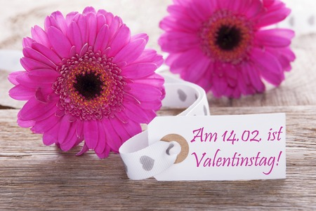 Label With German Text Am 14. Februar Ist Valentinstag Means February 14th Is Valentines Day. Pink Spring Gerbera Blossom. Vintage, Rutic Or Aged Wooden Background. Card For Spring Greetings. Stock Photo