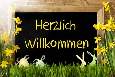 willkommen: Blackboard With German Text Herzlich Willkommen Means Welcome. Sunny Spring Flowers Nacissus Or Daffodil With Grass, Easter Egg And Bunny. Rustic Aged Wooden Background. Stock Photo