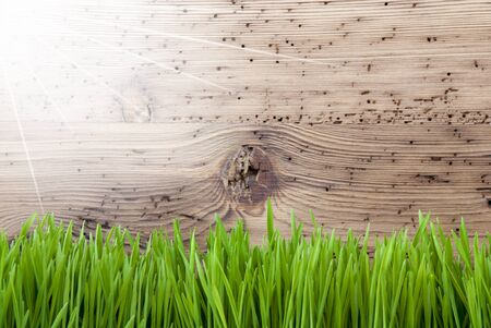 Bright Sunny Wooden Background, Grass, Copy Space Stock Photo - 68621113