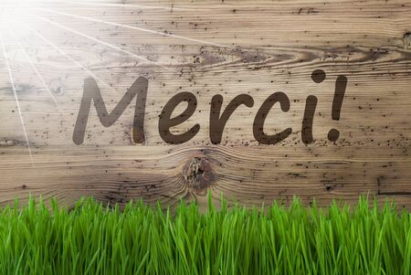 Sunny Wooden Background, Gras, Merci Means Thank You