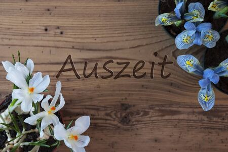 downtime: Crocus And Hyacinth, Auszeit Means Downtime