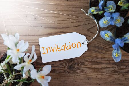 a meeting with a view to marriage: Sunny Flowers, Label, Text Invitation Stock Photo