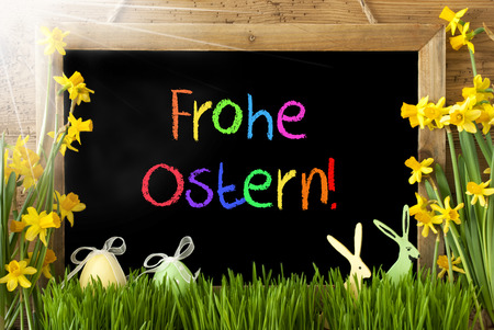 Sunny Narcissus, Egg, Bunny, Colorful Frohe Ostern Means Happy Easter Stock Photo