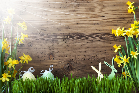 Sunny Easter Decoration, Gras, Text Happy Weekend