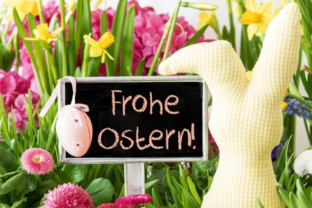 Easter Bunny, Colorful Spring Flowers, Frohe Ostern Means Happy Easter Stock Photo
