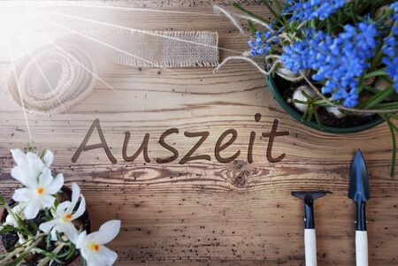 downtime: Sunny Spring Flowers, Auszeit Means Downtime