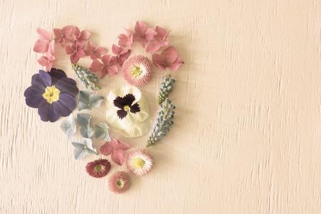Shiny Spring Flower Blooms, Hear Shape, Copy Sapce