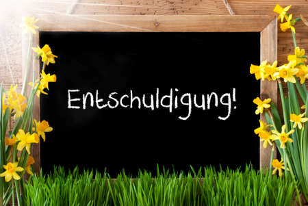 excuse: Sunny Spring Narcissus, Chalkboard, Entschuldigung Means Excuse