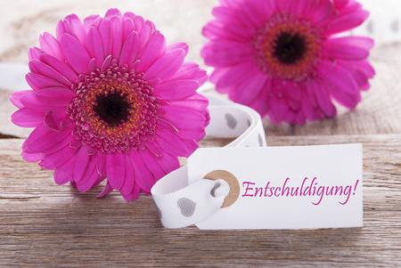 excuse: Pink Spring Gerbera, Label, Entschuldigung Means Excuse
