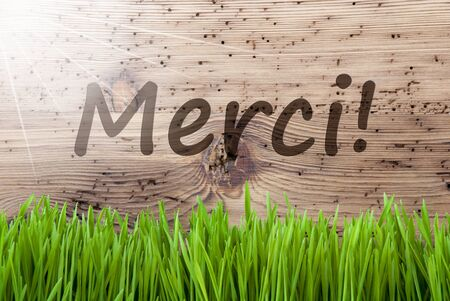 Bright Sunny Wooden Background, Gras, Merci Means Thank You