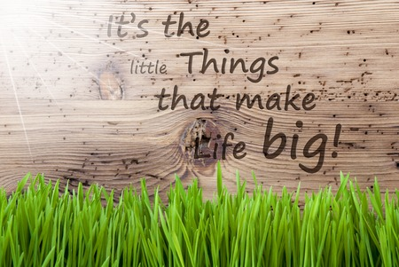 blume: Bright Sunny Wooden Background, Gras, Quote Little Things Life Big Stock Photo