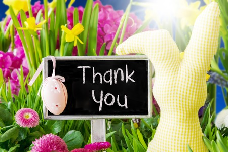 Sign With English Text Thank You. Sunny Spring Flowers Like Daisy And Narcissus. Easter Decoration Like Egg And Bunny. Stock Photo