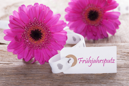 Pink Gerbera, Label, Fruehjahrsputz Means Spring Cleaning