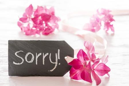 Hydrangea Blossom, Text Sorry