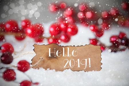 Etiqueta quemada, nieve, copos de nieve, texto en inglés Hola 2019