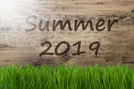 Sunny Wooden Background, Grass, English Text Summer 2019