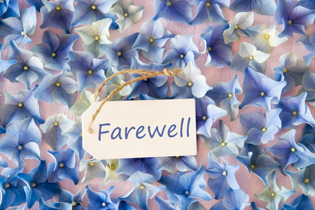 Hydrangea Flat Lay, Text Farewell, Flower Background Stock Photo