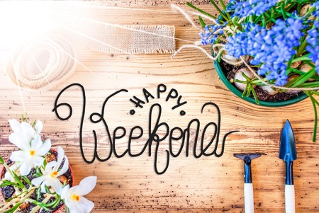 Sunny Spring Flowers, Calligraphy Happy Weekend, Wooden Background