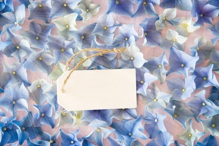 Label With Copy Space For Advertisement. Shiny Flat Lay Of Hydrangea Blossoms. 写真素材