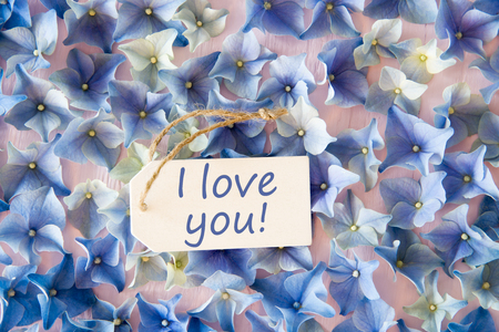 Hydrangea Flat Lay, Text I Love You Standard-Bild