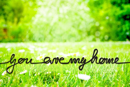 Sunny Spring Meadow, Daisy, Calligraphy You Are My Home Stockfoto - 123000303