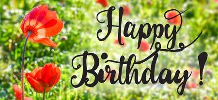 English Calligraphy Happy Birthday. Red Poppy Flower Meadow. Sunny Spring Season Greeting Card Фото со стока