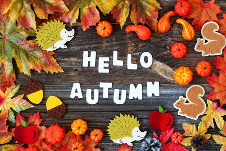 Colorful Autumn Decoration, Text Hello Autumn, Wooden Background Imagens