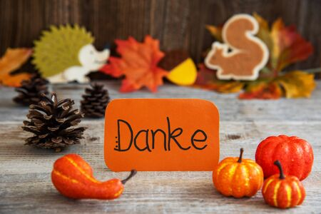 Label With Autumn Decoration, Danke Means Thank You
