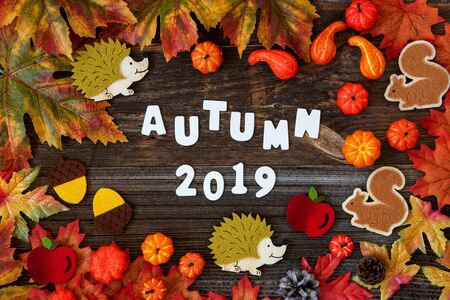 Colorful Autumn Decoration, Text Autum 2019, Wooden Background Imagens - 130686892