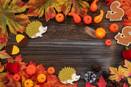 Colorful Autumn Decoration, Copy Space, Wooden Background