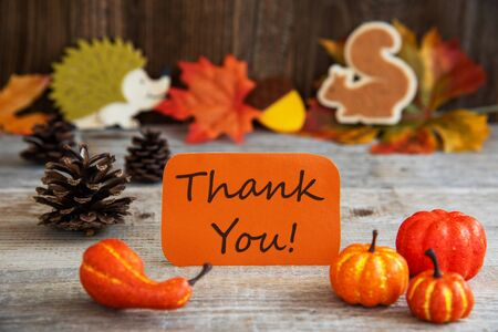 Label With Autumn Decoration, Text Thank You Imagens