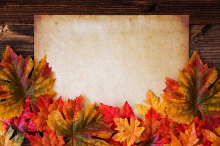 Old White Paper With Copy Space, Colorful Leaves Decoration