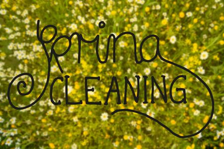 English Calligraphy Spring Cleaning. Beautiful Scenery Of Daisy And Yellow Flower Meadow In Spring Season. Imagens