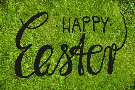 English Calligraphy Happy Easter. Green Grass Lawn Or Meadow. Top View