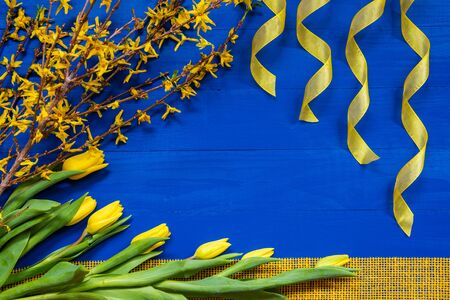 Yellow Tulip Flowers And Easter Branch, Ribbon, Blue Background Imagens
