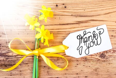 Sunny Narcissus Flower, Label, Calligraphy Thank You Imagens