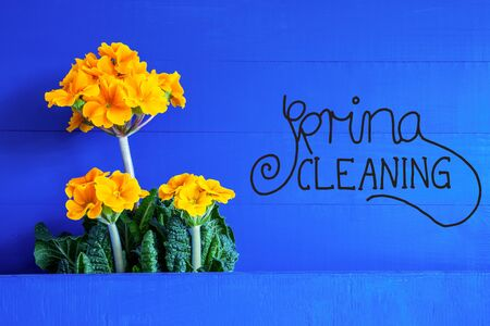 English Text Spring Cleaning. Yellow Beautiful Spring Flowers. Blue Wooden Background
