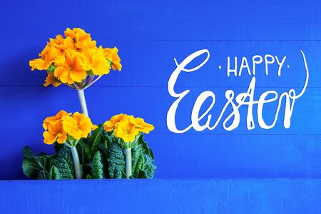 English Text Happy Easter. Yellow Beautiful Spring Flowers. Blue Wooden Background Imagens