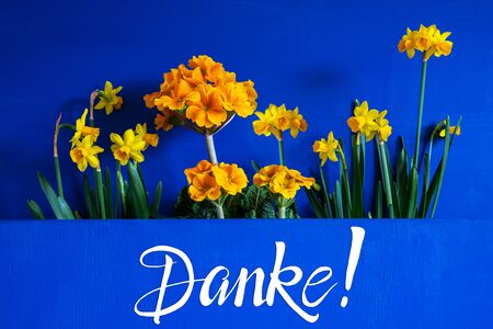 German Text Danke Means Thank You. Yellow Beautiful Spring Flowers Like Narcissus. Blue Wooden Background Imagens