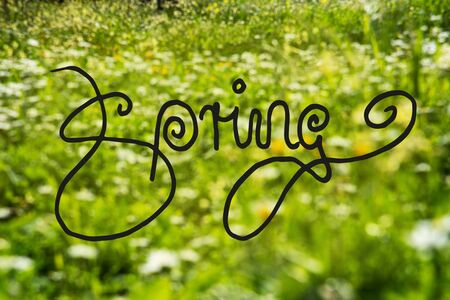 English Calligraphy Spring. Beautiful Scenery Of Daisy And Yellow Flower Meadow In Spring Season. Green Grass Background Or Texture