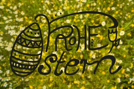 German Calligraphy Frohe Ostern Means Happy Easter. Beautiful Scenery Of Daisy And Yellow Flower Meadow In Spring Season.
