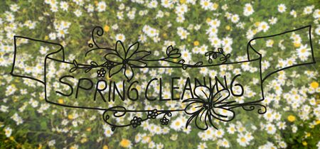 English Calligraphy And Illustration Spring Cleaning. Top View Of Daisy Flower Meadow In Spring Season.