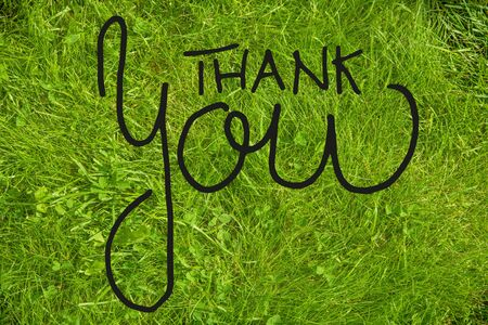 English Calligraphy Thank You. Green Grass Lawn Or Meadow. Top View
