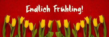 Red Wooden Background With German Text Endlich Fruehling Means Finally Spring. Banner Of Yellow Tulip Flowers In Spring Season Imagens