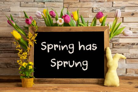 Blackboard With English Text Spring Has Sprung. Colorful Tulip Spring Flower Decor. Brick Wall Background Imagens