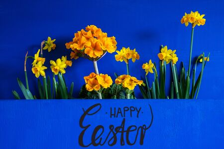English Text Happy Easter. Yellow Beautiful Spring Flowers Like Narcissus. Blue Wooden Background