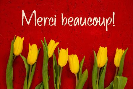 Yellow Tulip Flowers, Red Background, Text Merci Means Thank You